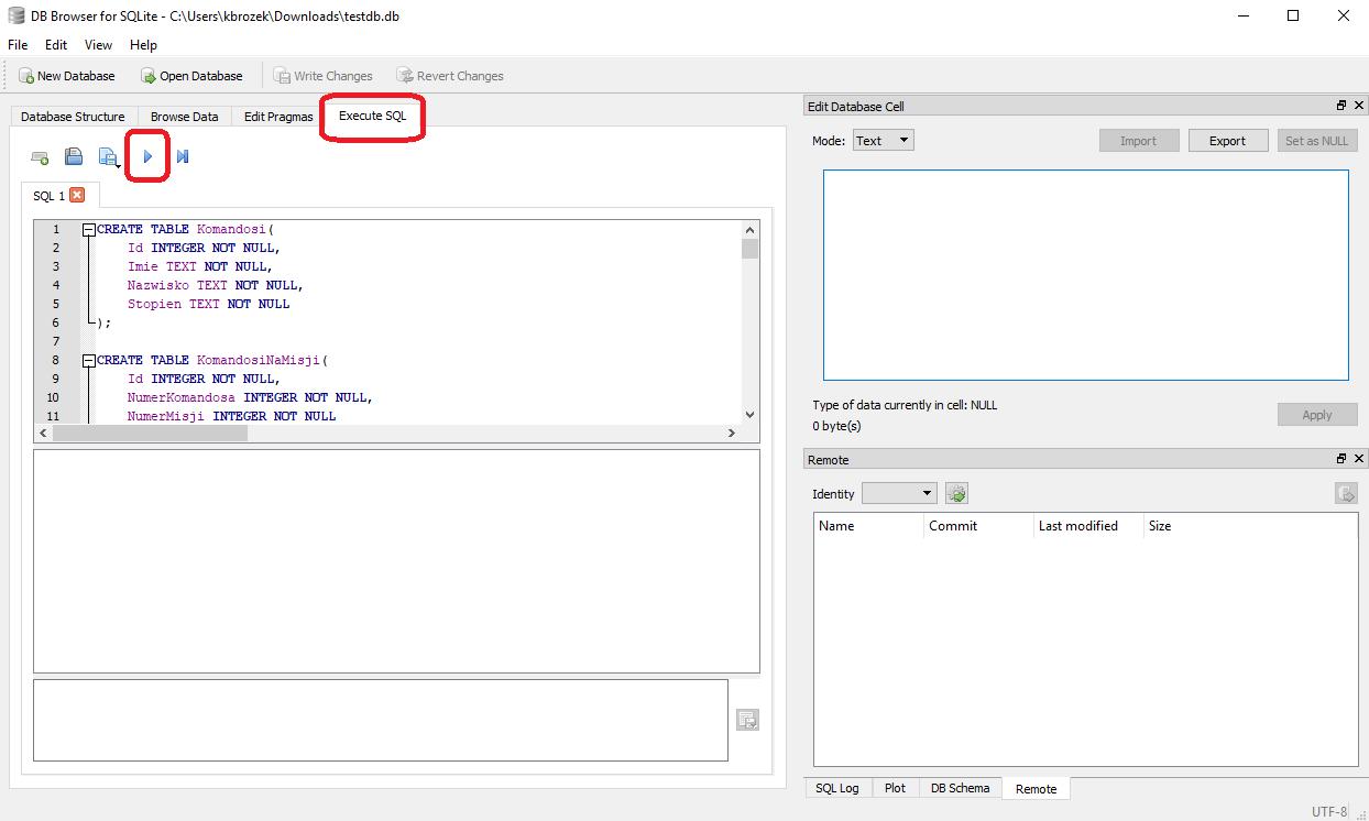 Execute SQL